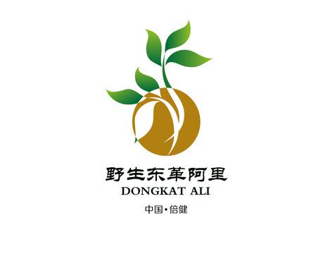 保健食品logo - 图形与logo设计