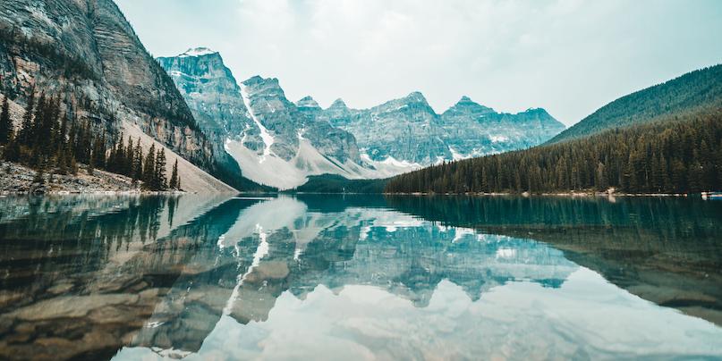 IP Canada Report 2019